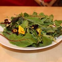Wildkräutersalat mit Cherimoyapudding