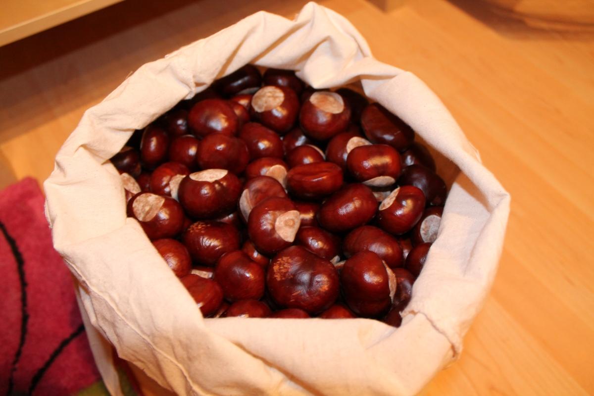 Kastanien als Seifen und Waschpulverersatz