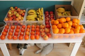 Fruithaul, ich liebe es