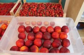 Diese Pfirsiche waren dieses Sommer so reif, dass sie im Mund dahin geschmolzen sind...es war wunderbar, wir haben es geliebt
