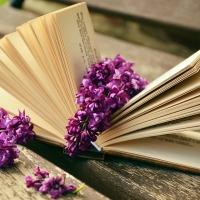 Bücherempfehlungen