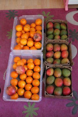 Links Orangen und rechts Mangos ;-)