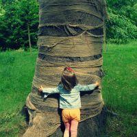 Elena die Baumheilerin